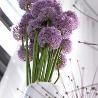 en matire dart floral nul ne souhaite tre frein par des rgles sur la manire de disposer les fleurs la meilleure solution est de laisser chacun