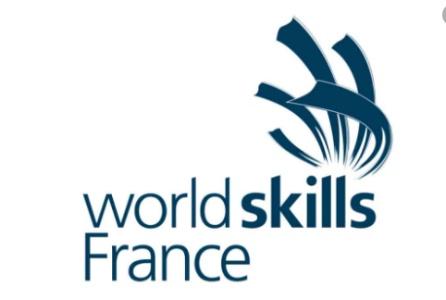 Finales nationales de WorldSkills France