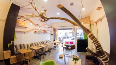 comment le bar chats la ronronnerie g re l 39 hygi ne. Black Bedroom Furniture Sets. Home Design Ideas