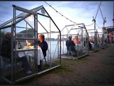 Des repas dans des serres en expérimentation à Amsterdam
